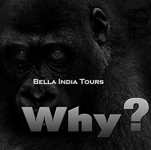 Pourquoi-Bella-India-Tours-2